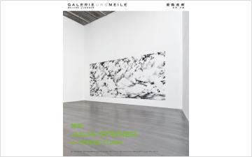 Julia Steiner: A TENSE TURN