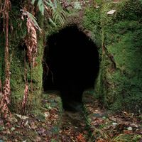 Homewardbounder #04 by Caroline McQuarrie contemporary artwork print