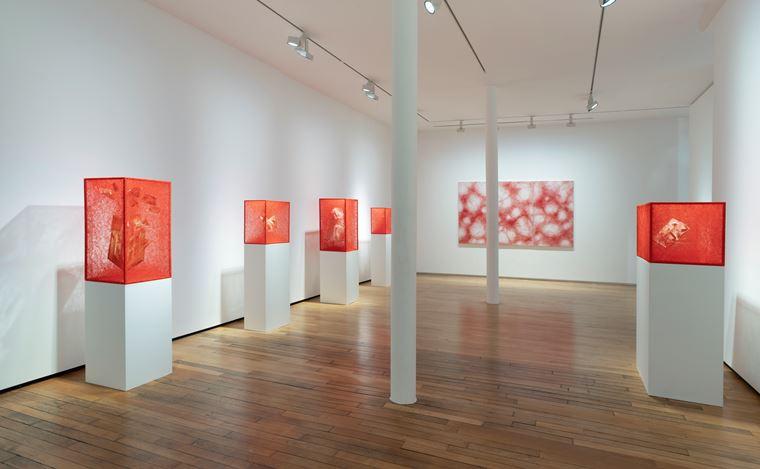 Exhibition view: Chiharu Shiota,Inner Universe, Templon, 28 Grenier Saint-Lazare, Paris (30 May–25 July 2020). Courtesy Templon.
