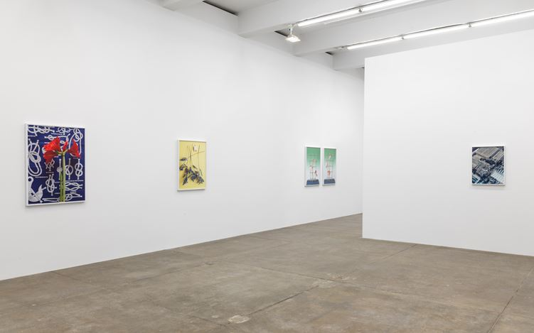 Exhibition view: Annette Kelm, Knots, Andrew Kreps Gallery, New York (7 April–12 May 2018). Courtesy Andrew Kreps Gallery.