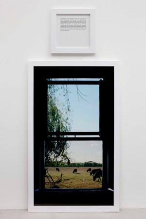 The view of my life, from the series: The Autobiographies by Sophie Calle contemporary artwork
