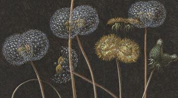 Contemporary art exhibition, Laurent Grasso, Future Herbarium at Perrotin, Shanghai