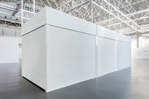 XL Chamber by Zhang Peili contemporary artwork