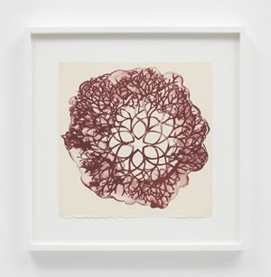 Desert Plant (TAM.1560, Tied-Wire Sculpture Drawing with Six-Pointed Star Center) by Ruth Asawa contemporary artwork