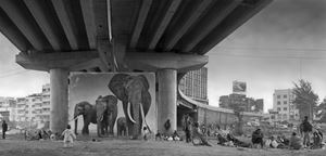 'Underpass with Elephants', Inherit The Dust, Kenya by Nick Brandt contemporary artwork