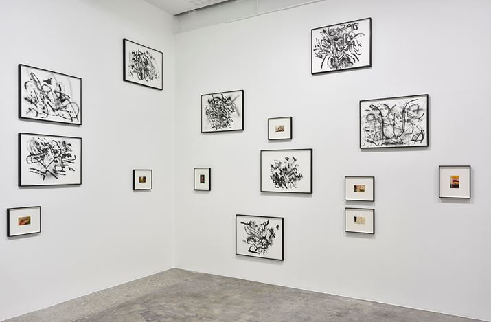 Exhibition view: Tacita Dean & Julie Mehretu, Galerie Marian Goodman, Paris (8 June–20 July 2018). Courtesy Marian Goodman Gallery.