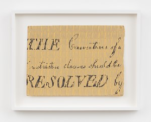Bill of Rights Fragment by Betty Tompkins contemporary artwork