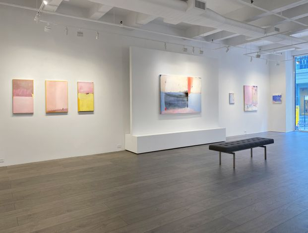 Exhibition view: Dana James, Something I Meant to Say, Hollis Taggart, New York (3 June–2 July 2021). Courtesy Hollis Taggart.