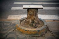 Gambiarra #119 by Cao Guimarães contemporary artwork photography