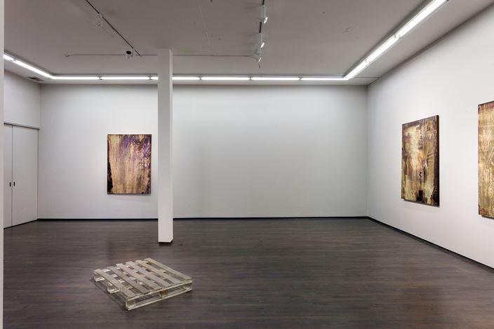 Exhibition view: Michael Joo, Project: Michael Joo, Washington Blvd, Chicago (9 February–16 March 2019). Courtesy Kavi Gupta.