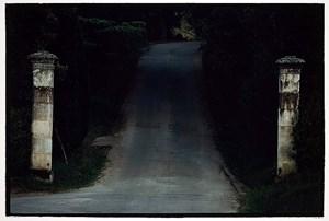 Untitled #22 by Bill Henson contemporary artwork