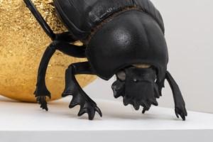 Kheper by Sam Jinks contemporary artwork