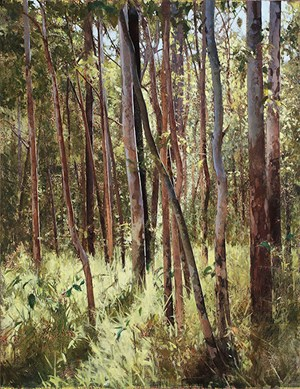 Forest Edge, Summer  Light by A.J. Taylor contemporary artwork