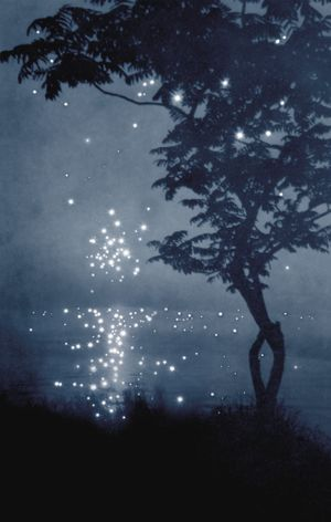 There was nothing like that night by Amy Friend contemporary artwork photography