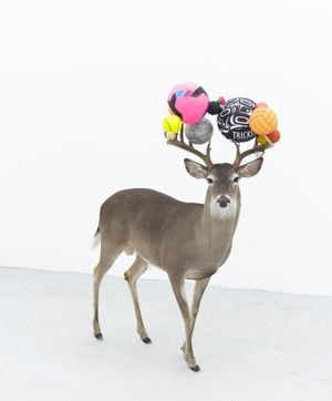 Can you smell maths? (Pink deer) by Gabriel Rico contemporary artwork