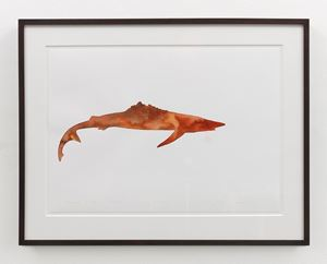Everest Shark – Bronze Working Drawing by Dorothy Cross contemporary artwork