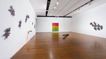 Contemporary art exhibition, Jim Lambie, Wild is the Wind at Roslyn Oxley9 Gallery, Sydney