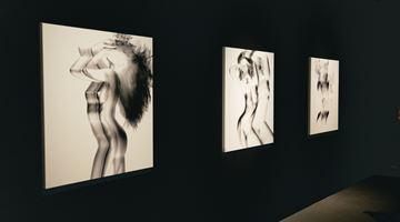 Contemporary art exhibition, Joshua Lin, Flux of Shadows at TKG+, TKG+, Taipei