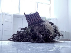 Ceppo sradicato (uprooted tree) by Christoph Keller contemporary artwork