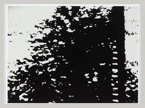 Filmstill aus - Die Waldrandabhörung by Dieter Appelt contemporary artwork