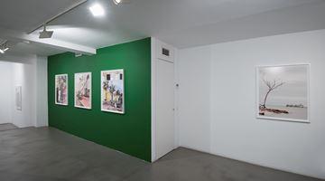Contemporary art exhibition, Anastasia Samoylova, FloodZone at Sabrina Amrani, Madera, 23, Madrid