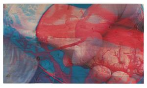 Untitled 9 by Pipilotti Rist contemporary artwork print
