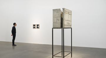 Contemporary art exhibition, Isa Genzken, Window at Hauser & Wirth, London