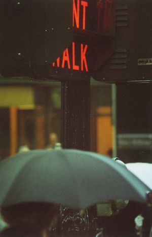 Don't Walk by Saul Leiter contemporary artwork
