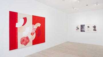 Contemporary art exhibition, Denise Green, After the Saar at Gallery 9, Sydney
