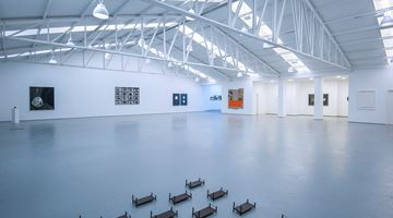 Contemporary art exhibition, Group show, Ver Versus Ver II at Sabrina Amrani Gallery, Madrid