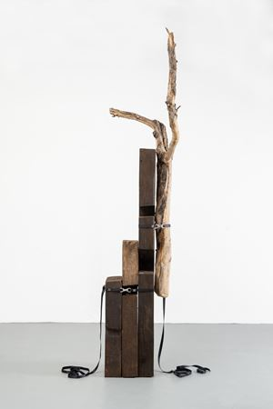 Organización de la Materia by Jose Dávila contemporary artwork