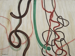 The Plastic Tubes with The Wires by Zhang Enli contemporary artwork