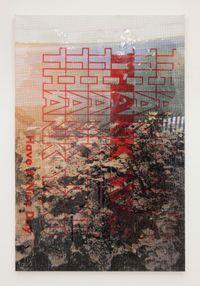 Natural History by Hugh Scott-Douglas contemporary artwork mixed media