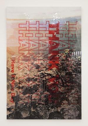 Natural History by Hugh Scott-Douglas contemporary artwork