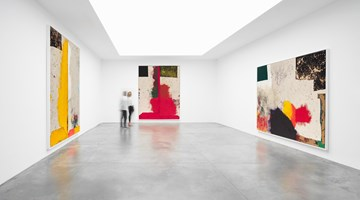 Contemporary art exhibition, Sterling Ruby, WIDW at Xavier Hufkens, Brussels