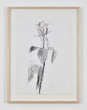 Rose 47 by Sabine Moritz contemporary artwork