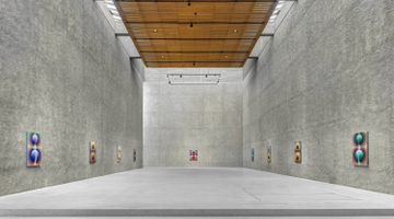 Contemporary art exhibition, Loie Hollowell, SACRED CONTRACT at KÖNIG GALERIE, Berlin, Germany