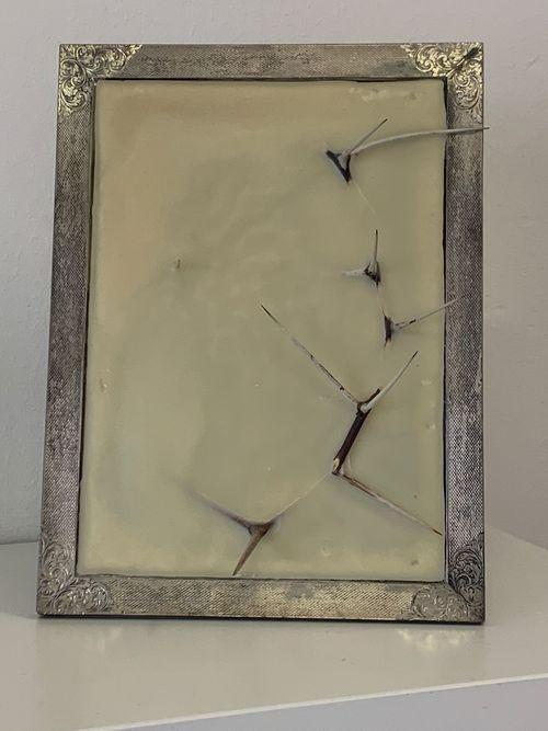Frame by Silvia Giambrone contemporary artwork