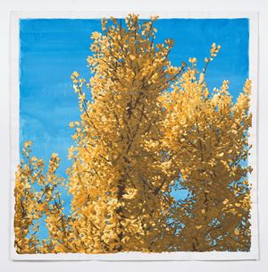 Ginkgo Tree by Hyewon Kim contemporary artwork