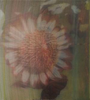 Pl. 441 by James Cousins contemporary artwork