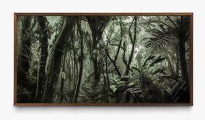 A picturesque voyage through Brazil # 80 by Cássio Vasconcellos contemporary artwork