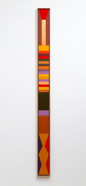 Coloured by anima by Louise Tuckwell contemporary artwork
