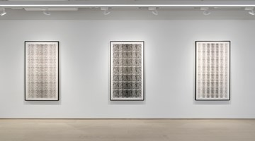 Contemporary art exhibition, Michal Rovner, Evolution at Pace Gallery, Geneva