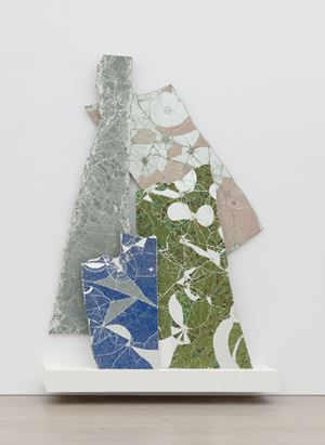 Placebo landscape by Bharti Kher contemporary artwork