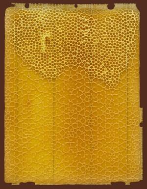 Midada da structura - Bienenwabe 04 recto 3 48 by Mirko Baselgia contemporary artwork