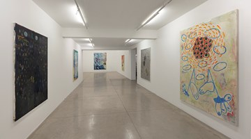 Contemporary art exhibition, Bruno Dunley, No Meio at Galeria Nara Roesler, São Paulo