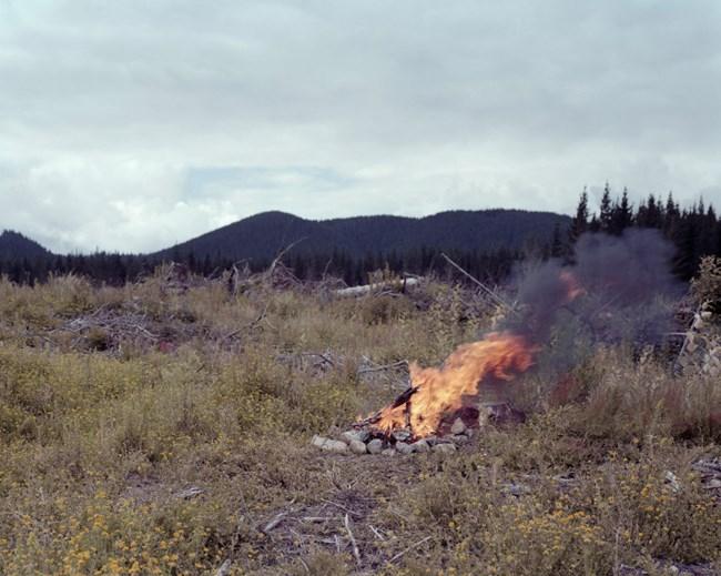 Like Home - The Hole by James Lowe contemporary artwork