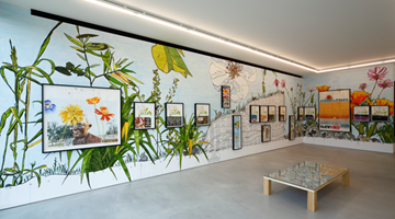 Contemporary art exhibition, Dave Muller, Sublime Memory Garden at Blum & Poe, Tokyo