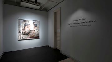 Contemporary art exhibition, Sandra del Pilar, A highlight of 'Both Eyes in My Two Hands' at Zilberman Gallery, Project Space, Istanbul