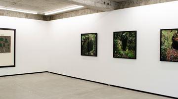 Jhana Millers contemporary art gallery in Wellington, New Zealand